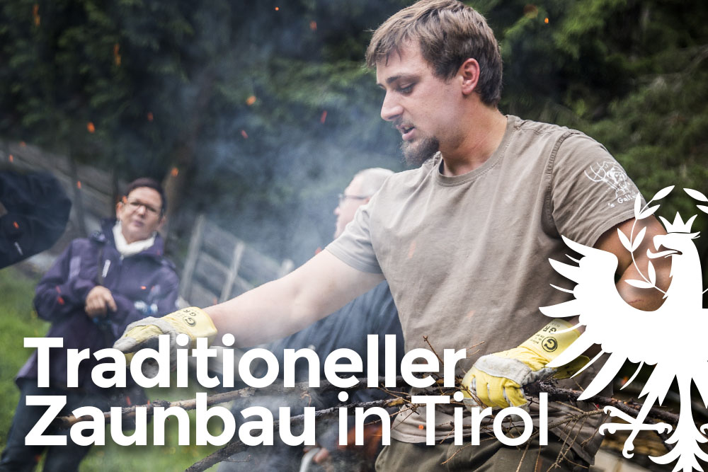 Traditioneller Zaunbau in Tirol: Unterwegs mit Wendelin Neuner